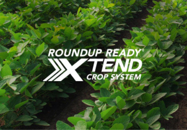 Roundup Ready® Xtend Crop System